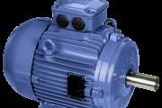 W21 - Cast Iron Frame - EFF2 Improved Efficiency - 50°C