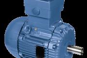 Explosion Proof Motors -EFF2 Improved Efficiency - EEx d / EEx de (ATEX)