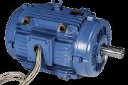 Low Voltage Motors - IEC / Two Speed