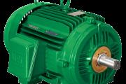TEFC - IEEE841 NEMA Premium Efficiency Motors