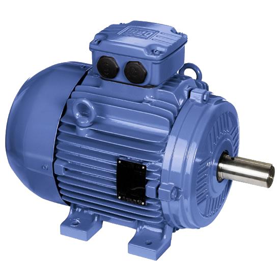 Rotor Tech Co Ltd Bfg Line Iib Medium Voltage Atex